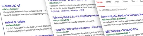 det er her du udnytte din Det er let af gå online, husk at udnytte din gratis reklameplads i Google