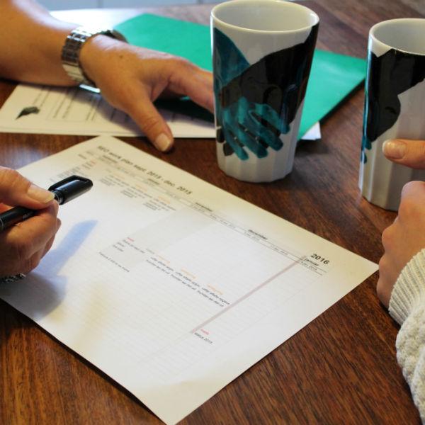 billede af oversigt og plan for SEO rådgivning