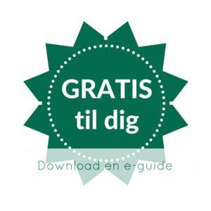 download en gratis e-guide til dit hjemmesidearbejde