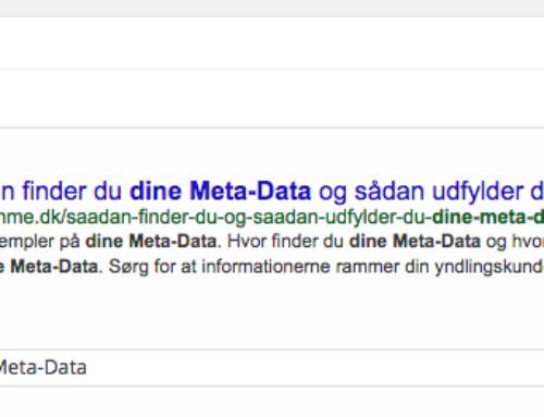 Sådan udfylder du dine Meta-Data