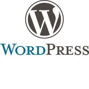 eksempel med WordPress-systemet vises i minikurset
